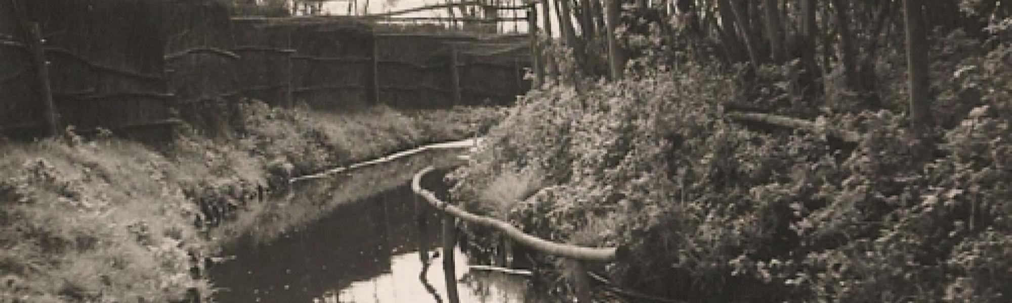 Beeld van Eendekooi Stokman in het verleden